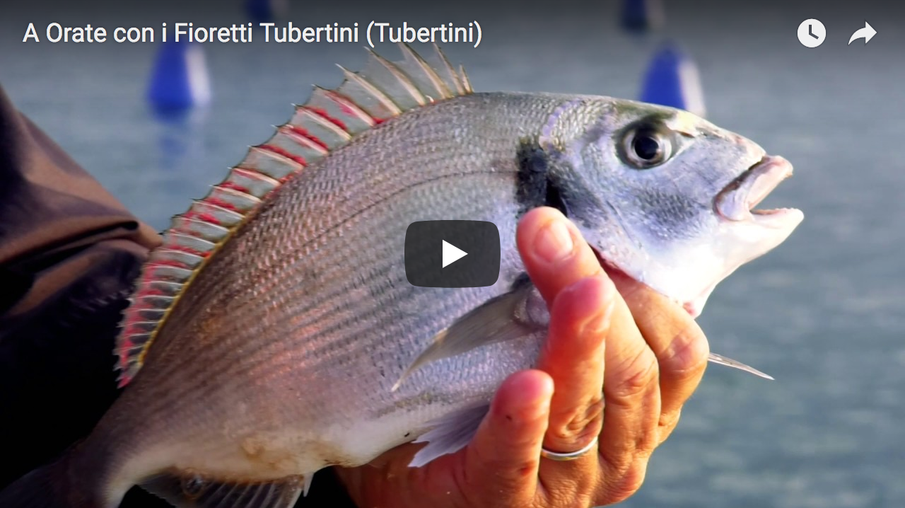Screenshot di copertina video You tube. Nella foto mano che tiene un'orata appena pescata